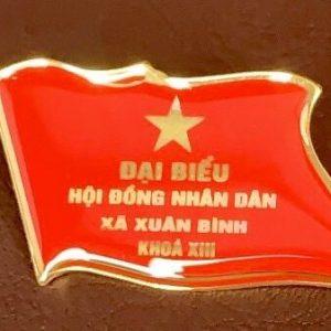 huy-hieu-dai-bieu-hoi-dong-nhan-dan